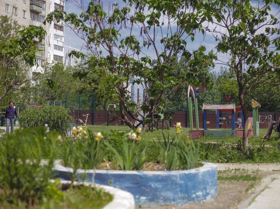 В Волгограде 15 сентября ожидается ясная погода при +24 градусах