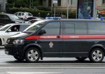 Державшей детей на цепи жительнице Петербурга предъявили обвинение