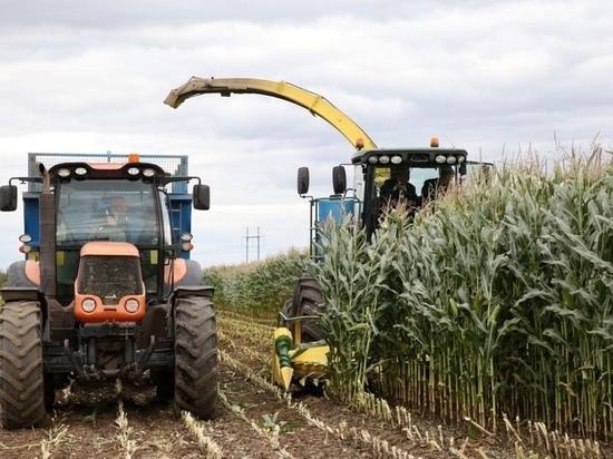 В Тверской области по сравнения с прошлыми годами увеличены темпы уборочных сельхозработ