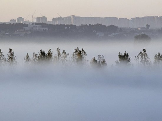 В Курской области 15 сентября предсказывают туман и до +21 градуса днем