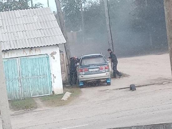 Тучи мошки заполонили село в районе Забайкалья