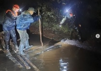 Житель Ноябрьска ушел в лес и заблудился, через геолокацию спасатели довольно быстро его обнаружили