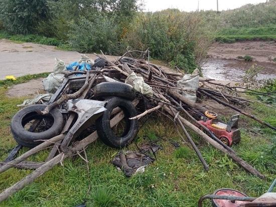 Экоактивисты разобрали запруду и почистили берега Веряжи