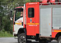 Дачный дом сгорел в Великих Луках из-за замыкания электропроводки
