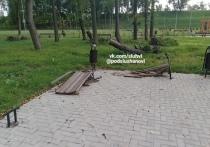 Фотофакт: разрушенные после урагана скамейки в Великих Луках до сих пор не заменили