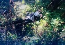 Мертвого новгородца нашли лежащим в лесном массиве на улице Связи