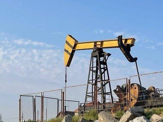 В ГД призвали не паниковать из-за оставшихся на 21 год запасов нефти