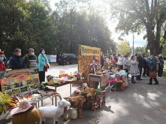 Смотр-конкурс «Ветеранское подворье» состоялся в Локнянском районе