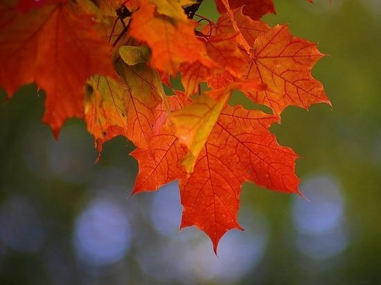 Названы важнейшие дни сентября, которые могут изменить жизнь