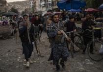 Боевики движения «Талибан» (признано террористическим и запрещено в РФ) продолжают воевать в Панджшерском ущелье