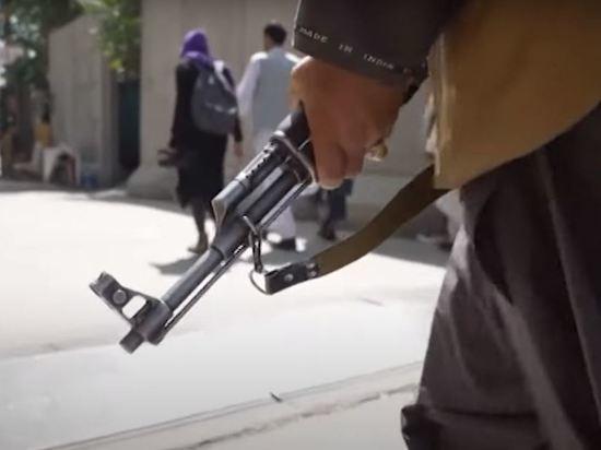 Талибы расправились над офицером ВВС Афганистана несмотря на амнистию