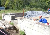 В настоящее время в Хабаровске продолжается строительство специализированного центра экспертиз диких животных