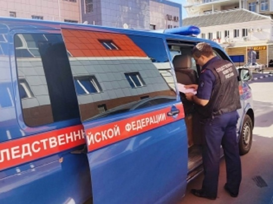 СК восстановил картину убийства семьи напавшими на воронежских полицейских