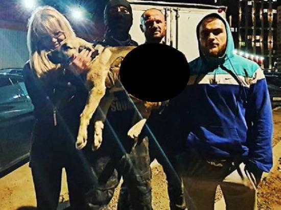 Изощренное развлечение придумал для себя неизвестный догхантер, который проехался по одному из коттеджных поселков в Ленинском городском округе на моноколесе и расстрелял из пневматики троих собак