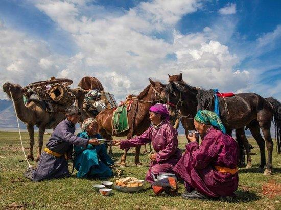 Молоко помогло кочевникам 5000 лет назад мигрировать по Европе