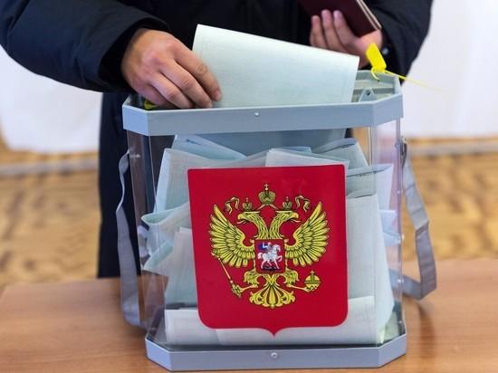 В Ярославле выборы пройдут без пирожков