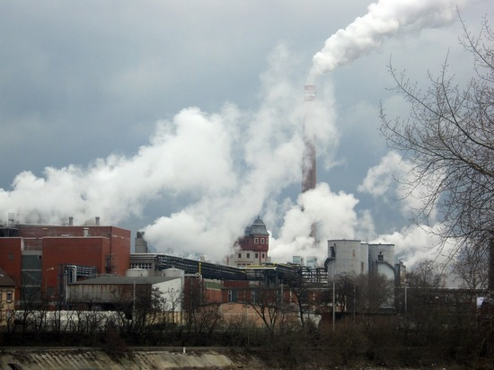 Компания продолжает реализацию совместных проектов в области углеродного менеджмента