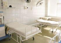 Второй день подряд в Хакасии умирают по 9 пациентов с COVID-19