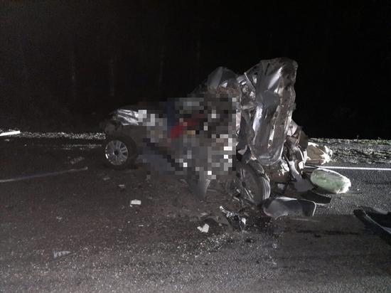 Пьяный водитель «КамАЗа» погубил 4 взрослых и ребенка под Воронежем
