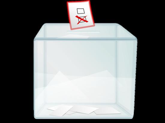Глава ДНР Пушилин проголосовал на выборах в Госдуму