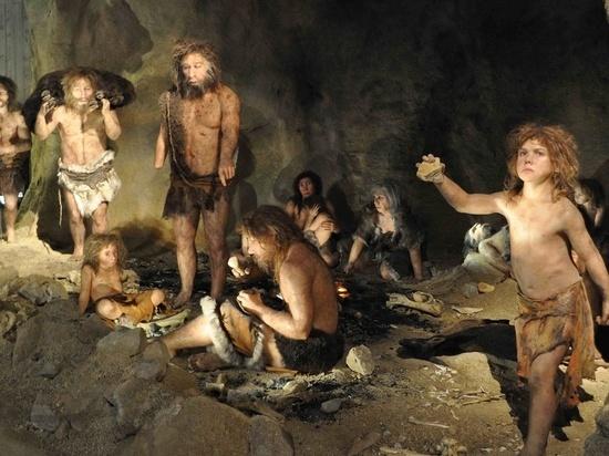 90 тыс. лет назад для обработки шкур животных использовали костяные инструменты