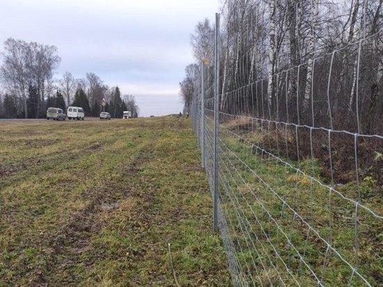 В Ярославской области огородят федеральную трассу от лосей