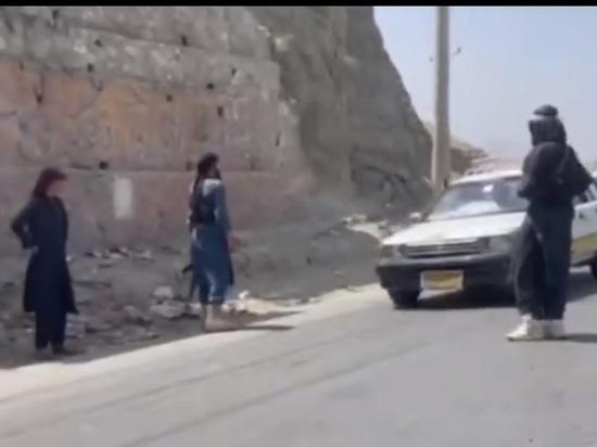 Талибы начали принудительную мобилизацию молодежи Афганистана