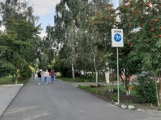 Две пешеходные зоны на улицах Гагарина и Серёгина появились в Курске