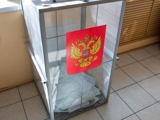 Более 1,3 млн человек проголосовали онлайн на выборах в Москве
