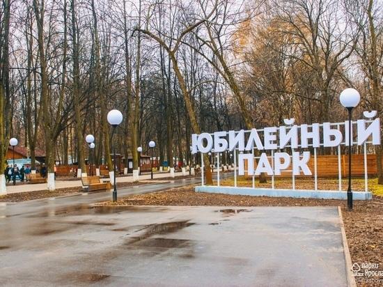 Юбилейный парк Ярославля будут благоустраивать в морозы