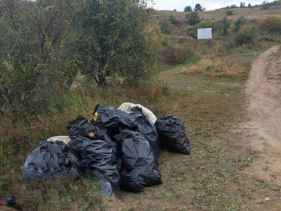 Волонтеры убрали 15 кубов мусора на Сухотино в Чите