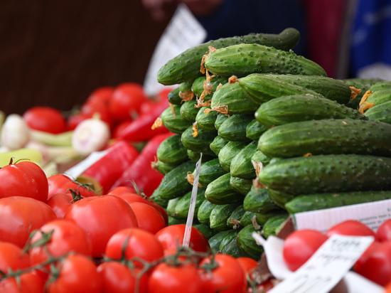 Преподаватель Уральского института фитнеса Игорь Мормиль объяснил, почему не стоит смешивать в одном салате свежие огурцы и помидоры