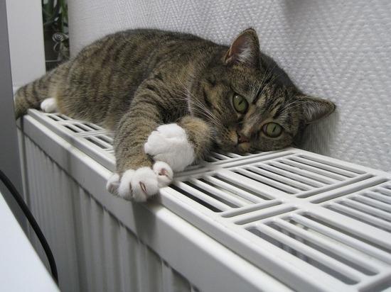 Без отопления остаются 25 жилых домов в Чите