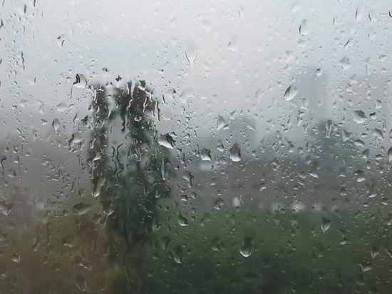 Еще в субботу синоптики предупредили Москвичей и жителей области, что их ожидает четырехдневный дождь