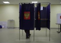 Социологи раскрыли данные экзитполов по выборам в Петербурге