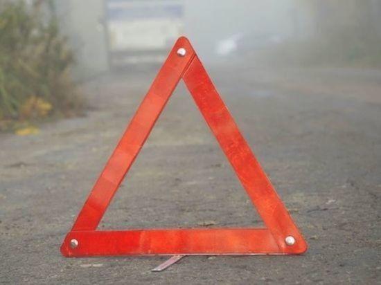 Семь человек пострадали в ДТП с участием микроавтобуса в Воронежской области