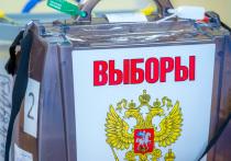 По предварительным итогам выборов в Челябинской области лидирует «Единая Россия»