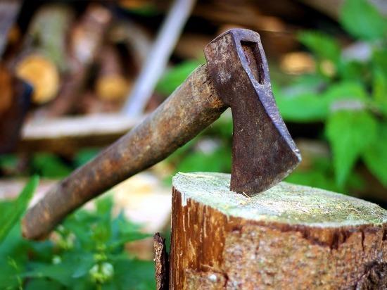 Пустые бюллетени в УИК Забайкалья рубили топорами и пилили лобзиками