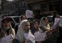 Пришедшее к власти в Афганистане радикально-исламистское движение «Талибан» (запрещенная в РФ террористическая организация) продолжает закручивать гайки по «женскому вопросу»