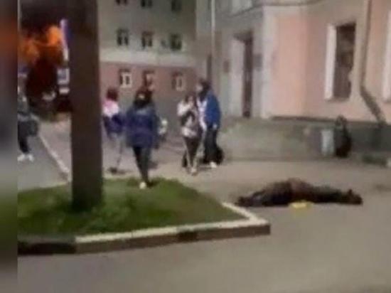 В Ярославле после Дня города умерла лошадь, которая катала детей во время праздника