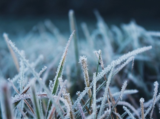 Ночные заморозки пришли в Удмуртию