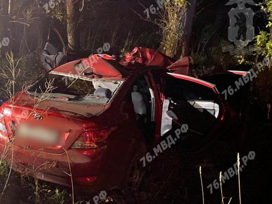 В Ярославской области в ДТП с лосем погиб водитель
