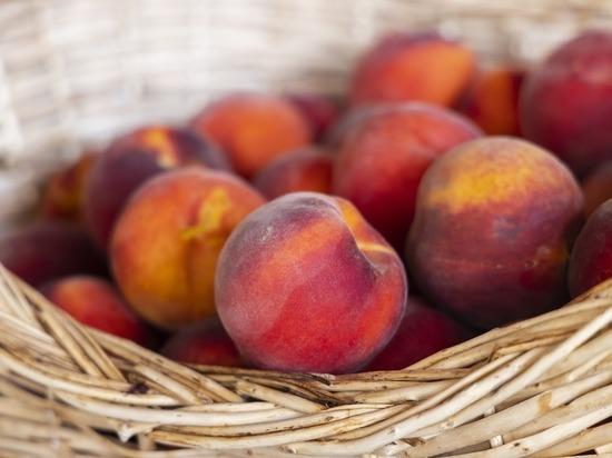 Россельхознадзор нашел бурую гниль в персиках из Сербии