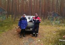 За неделю спасатели в Ленобласти нашли 25 заблудившихся грибников