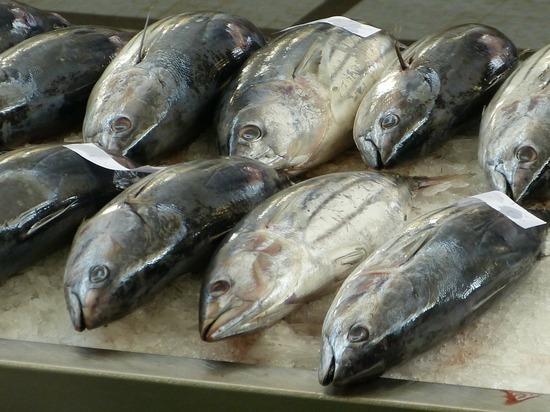 Все чаще граждане начинают отказываться от рыбы и морепродуктов - не только из-за цен