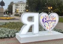 На улицах города появились арт-объекты в виде ярких сердец с изображениями павлинов