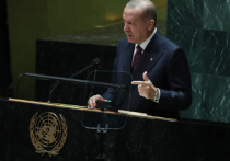В Совфеде объяснили слова Эрдогана об «аннексии» Крыма его ностальгией