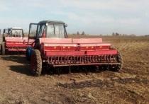 Зерновые культуры планируется разместить на более чем 730 гектарах угодий