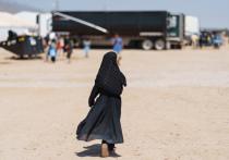 По мнению экспертов, возможный приток мигрантов из-за событий в Афганистане - это проблема, которая беспокоит Европу и Запад, не говоря уж о Турции