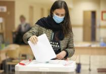 Правильность и корректность подсчета голосов избирателей в ходе дистанционного голосования в Москве могут лично проверить разработчики программного обеспечения и технические специалисты